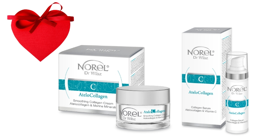 AteloCollagen SET